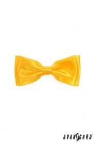 Výrazný chlapčenský motýlik v žltej